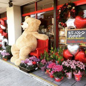 泉大沼町|オシャレなギフト選びならココ|お花とバルーンのお店 Little Lilly *リトルリリィ* 様