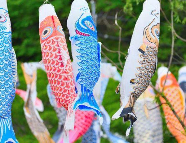 明世町|市民から寄付された約160匹の鯉が空を泳ぎます|瑞浪市こいのぼり祭り