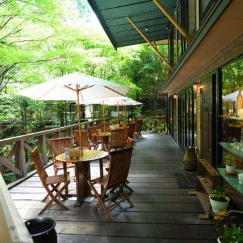日吉町|鬼岩公演 呂久沢の森に佇む、素敵なカフェレストラン|Ryo-an(了庵)  様