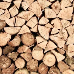 木材不足、ウッドショックとは?その1